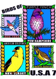 English Worksheets: BIRDS OF U.S.A. SEVEN.