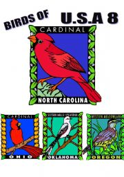 English Worksheets: BIRDS OF U.S.A. EIGHT.