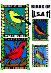 English Worksheets: BIRDS OF U.S.A. ELEVEN.