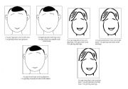 English Worksheets: Appearance