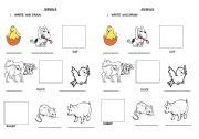 English Worksheets: PRACTICE ANIMAL