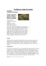 English Worksheets: Animal Profile