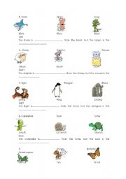 Short adjectives comparatives 2/2