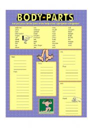 English Worksheets: Body parts (color)