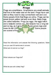 English Worksheets: Frogs