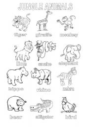 English Worksheet: Jungle Animals Coloring Sheet