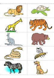 ... worksheets the animals animals flashcards animals flashcards