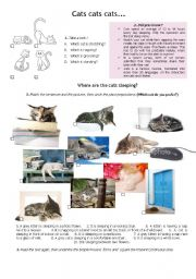 English Worksheets: Cats, cats, cats...