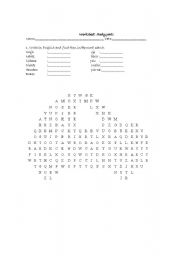 English worksheet: Body: word search and anagram