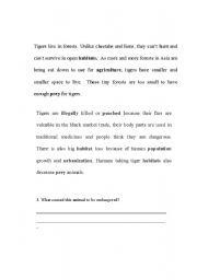 English Worksheets: Tigers - Endangered 2