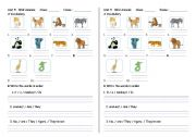 English Worksheets: About animal