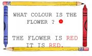 English worksheet: WHAT COLOUR IS THE FLOWER? SIGN
