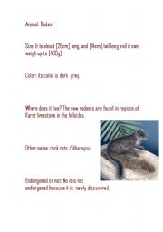 English Worksheets: The rodent ( information Report)