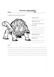 English worksheet: Animal worksheets : Simple Present and description