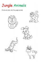 English teaching worksheets: Jungle animals