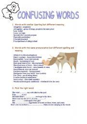English Worksheet: Confusing words