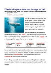 English Worksheet: Whale whisperer teaches beluga to �talk� -- Reuter�s Odd News
