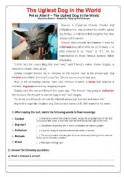 English Worksheets: The Ugliest Dog in the World -- Reuters Odd News