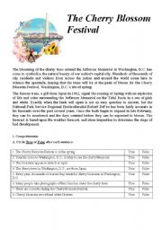 English Worksheets: The Cherry Blossom Festival