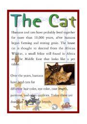 English Worksheet: The Cat