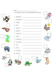 English Worksheets: MARINE ANIMALS