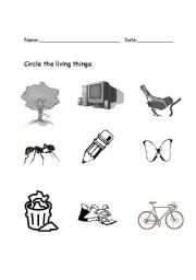 English Worksheet: Circle the living things
