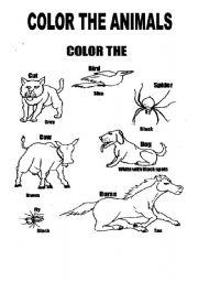 English Worksheets: animals coloring