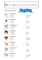 English Worksheets: body parts