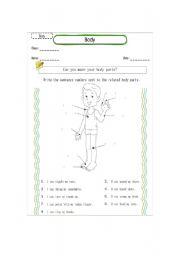 English Worksheets: describing body