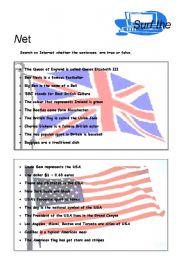 English Worksheet: surf the net