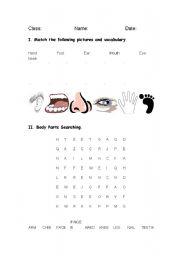 English Worksheets: Bodt Parts