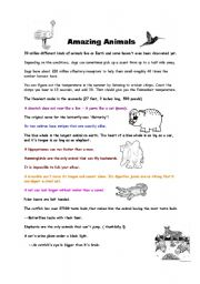 English Worksheets: amazing animals fun facts