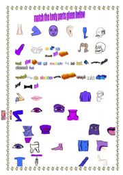 English Worksheets: bodyparts matching