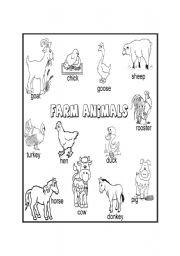 English Worksheet: Farm animals
