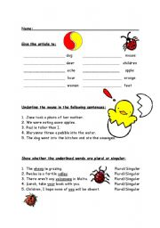 English Worksheets: Article, nouns and adjectives