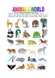English Worksheets: ANIMALS WORLD
