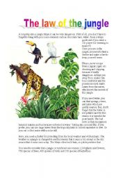 English Worksheets: THE JUNGLE