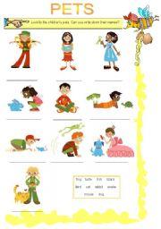English Worksheets: PETS (2-09-08)