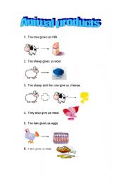 English Worksheets: Animals Products