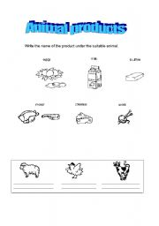 English Worksheets: Animal Products