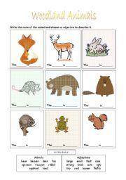 English Worksheets: Woodland Animals