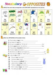 English Worksheet: Opposites