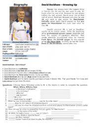 Biography (David Beckham)