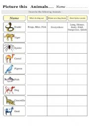 English Worksheet: Picture this       Animals