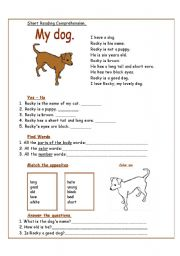 English Worksheet: My dog