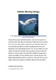 English Worksheets: Bubble-Blowing Beluga