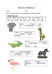 English Worksheets: WILD ANIMALS