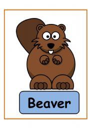 English Worksheets: animals PART 2
