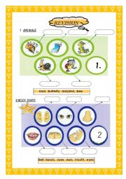 English Worksheet: pictures for children animals /body parts PAGE1
