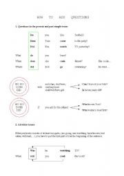 English Worksheet: How to ask questions and to make sentences negative